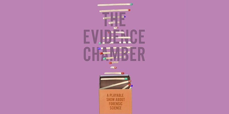 The Evidence Chamber (Online review)