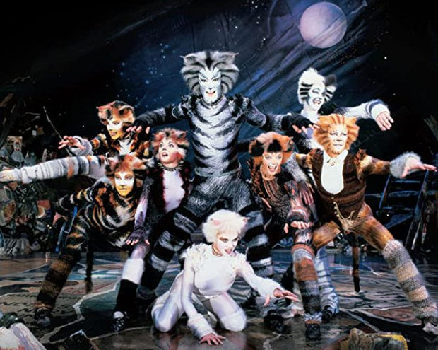 cats1-LST398944