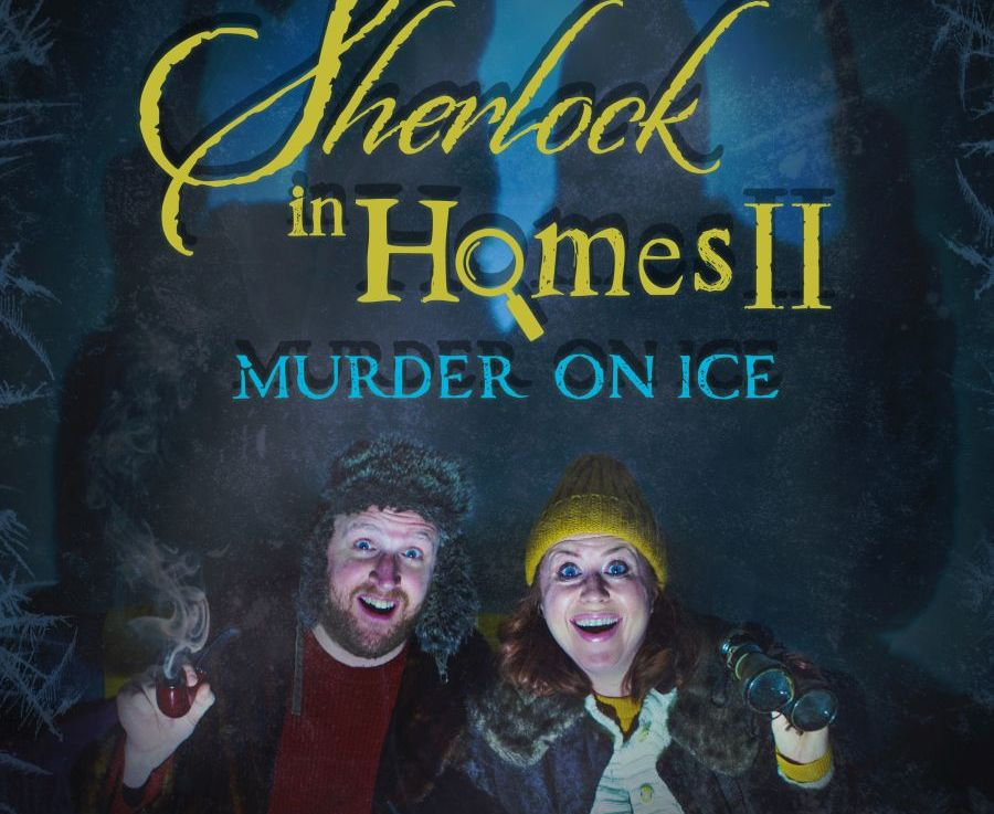Sherlock In Homes 2: Murder On Ice (Onlinereview)